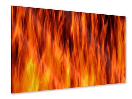 Acrylglasbild Feuer Close Up